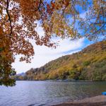 今年も行きたい!中禅寺湖の紅葉狩りレポート