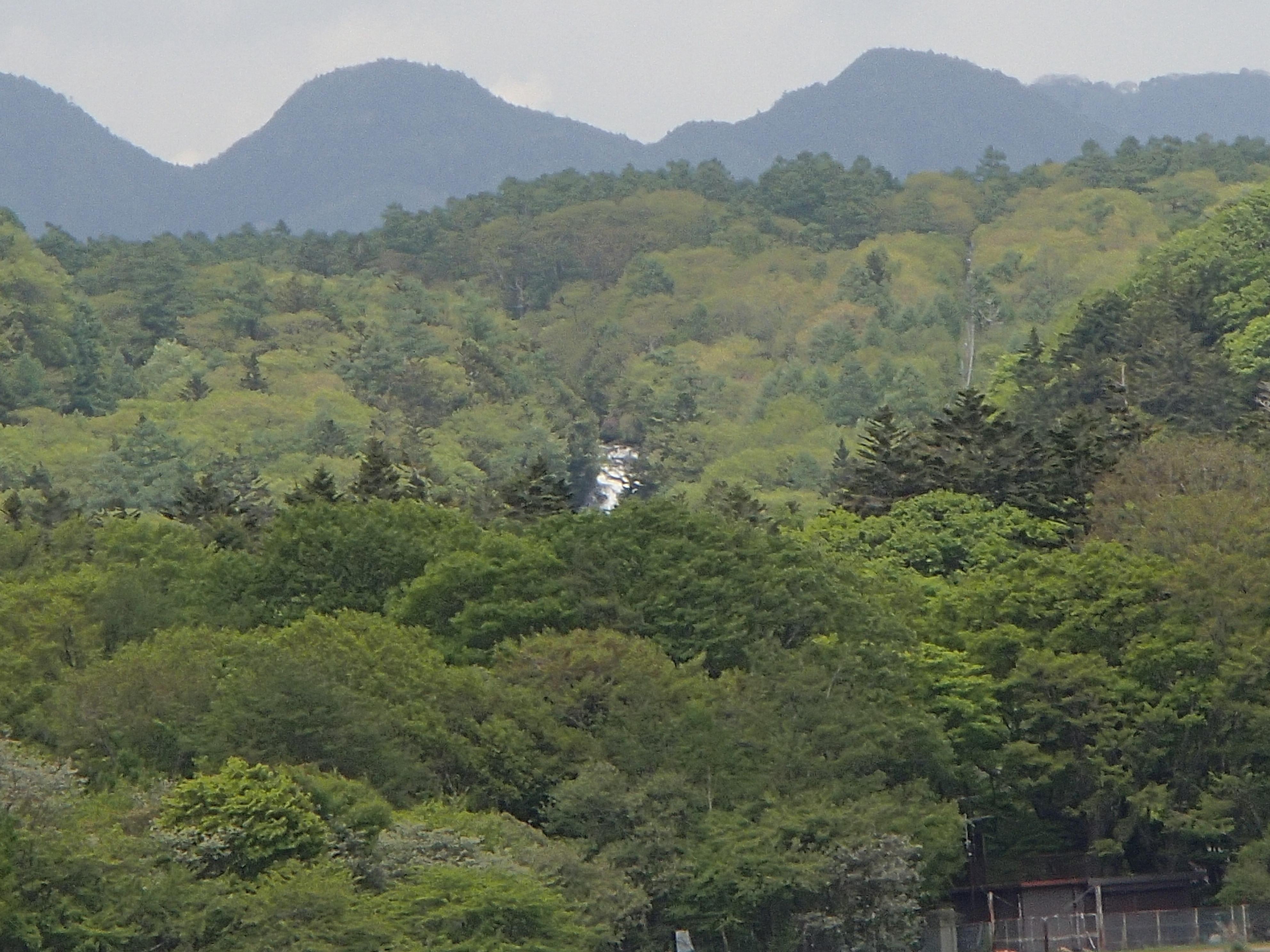 中禅寺湖の湖面から望む竜頭の滝