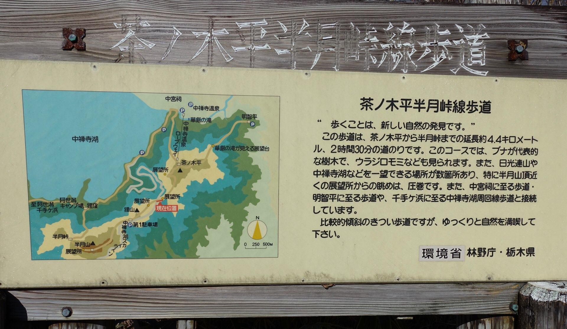 気になっていた茶ノ木平遊歩道にチャレンジしてきました