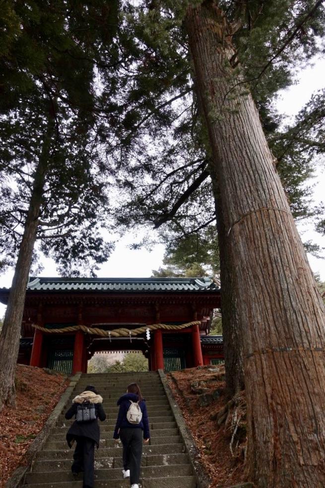 日光二荒山神社の奥深さを知りました!